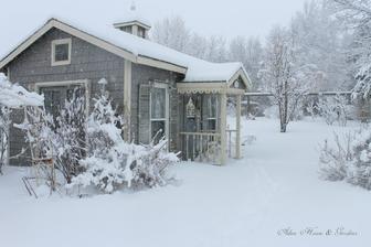 sneh a mráz vykúzlia takúto krásu
