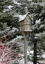 nezabúdame na vtáčikov v zime