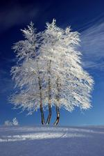 Aj zima má svoje krásy