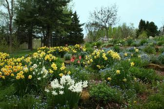 a opäť je tu jar...