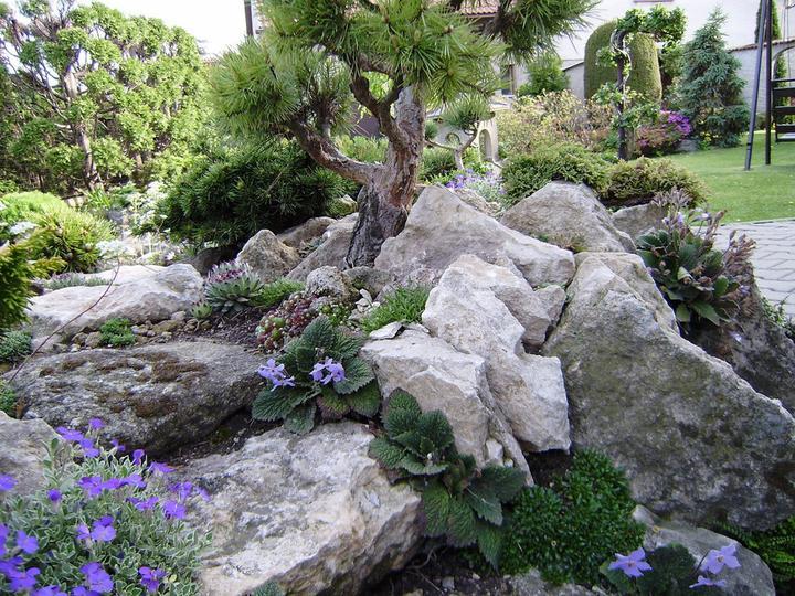 Skalky,skalničky a všeličo do záhrady - Obrázok č. 197
