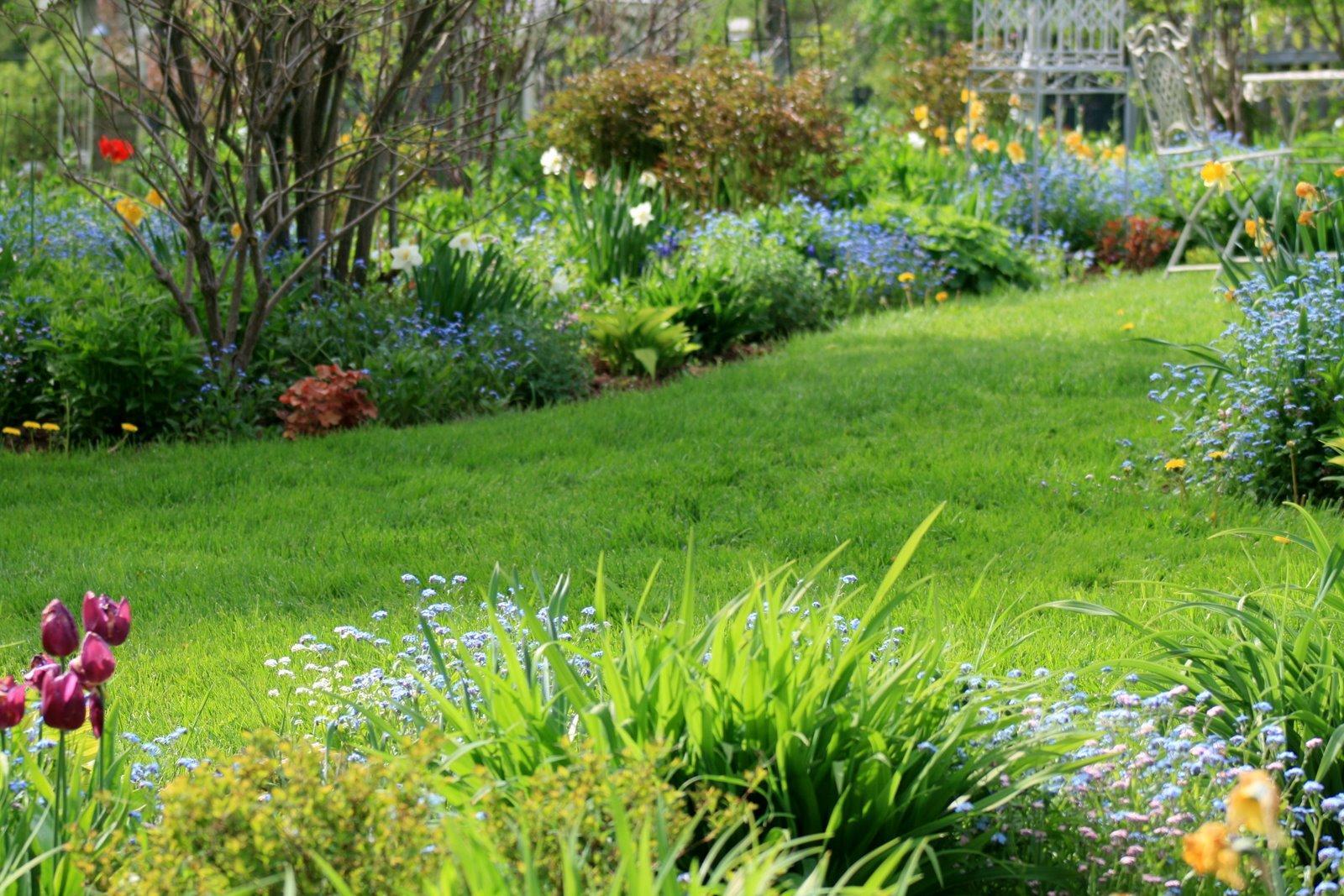 Krása divokej záhrady - Obrázok č. 322