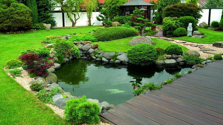 Voda v záhrade - Obrázok č. 311