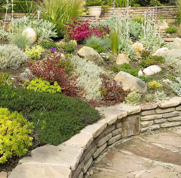 Skalky,skalničky a všeličo do záhrady - Obrázok č. 251