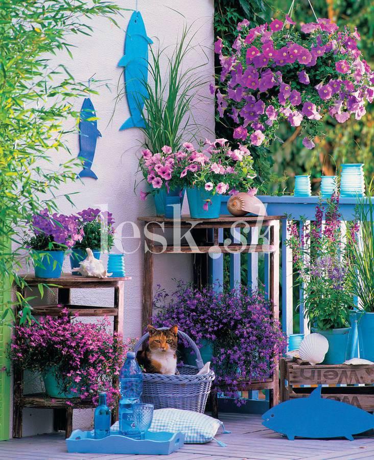 Balkonové a terasové zátišie - Obrázok č. 377