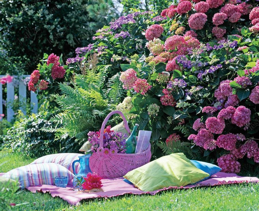 Letná garden party - Obrázok č. 165