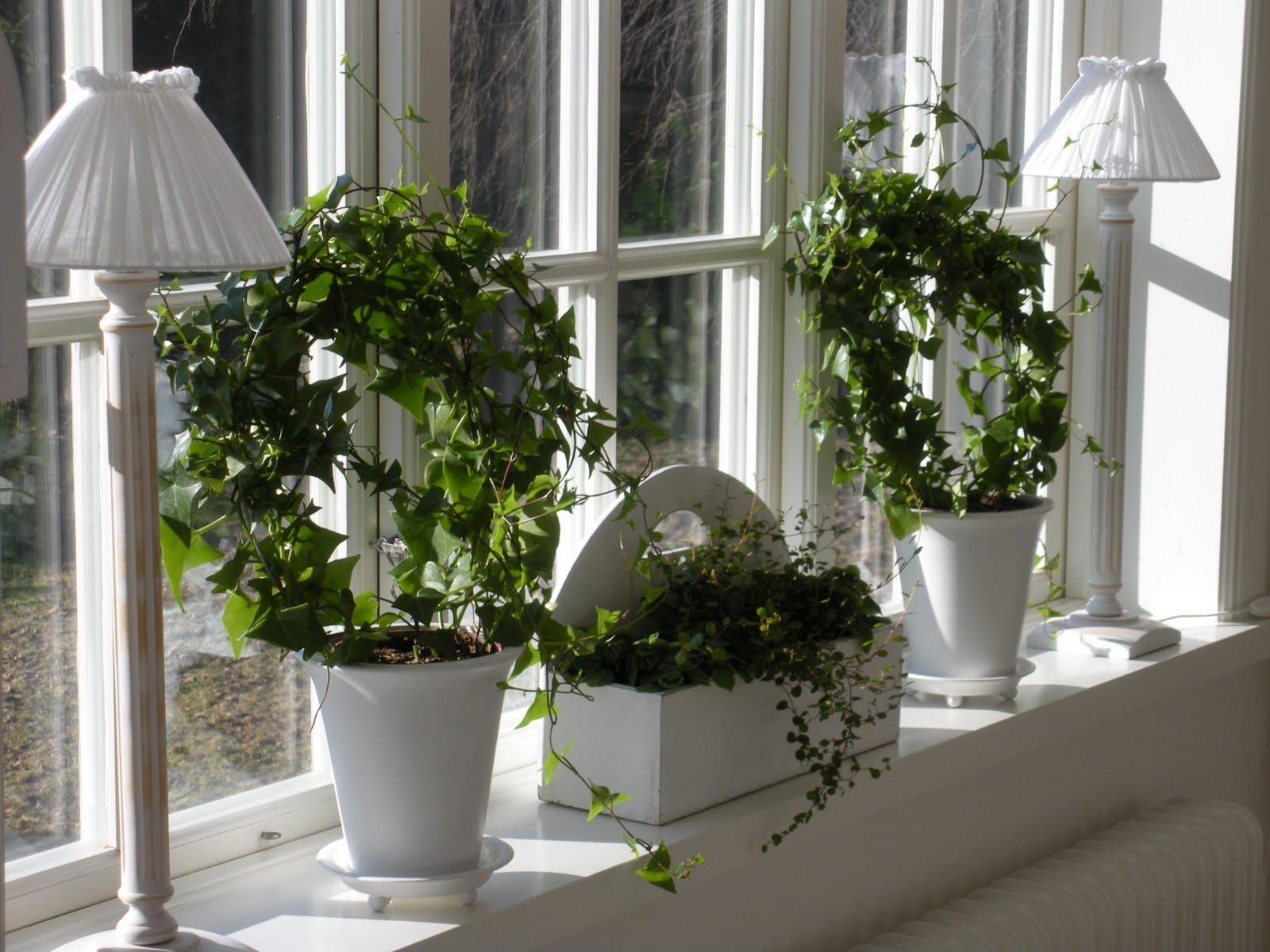 Romantika v interiéri spríjemní domov... - Obrázok č. 183