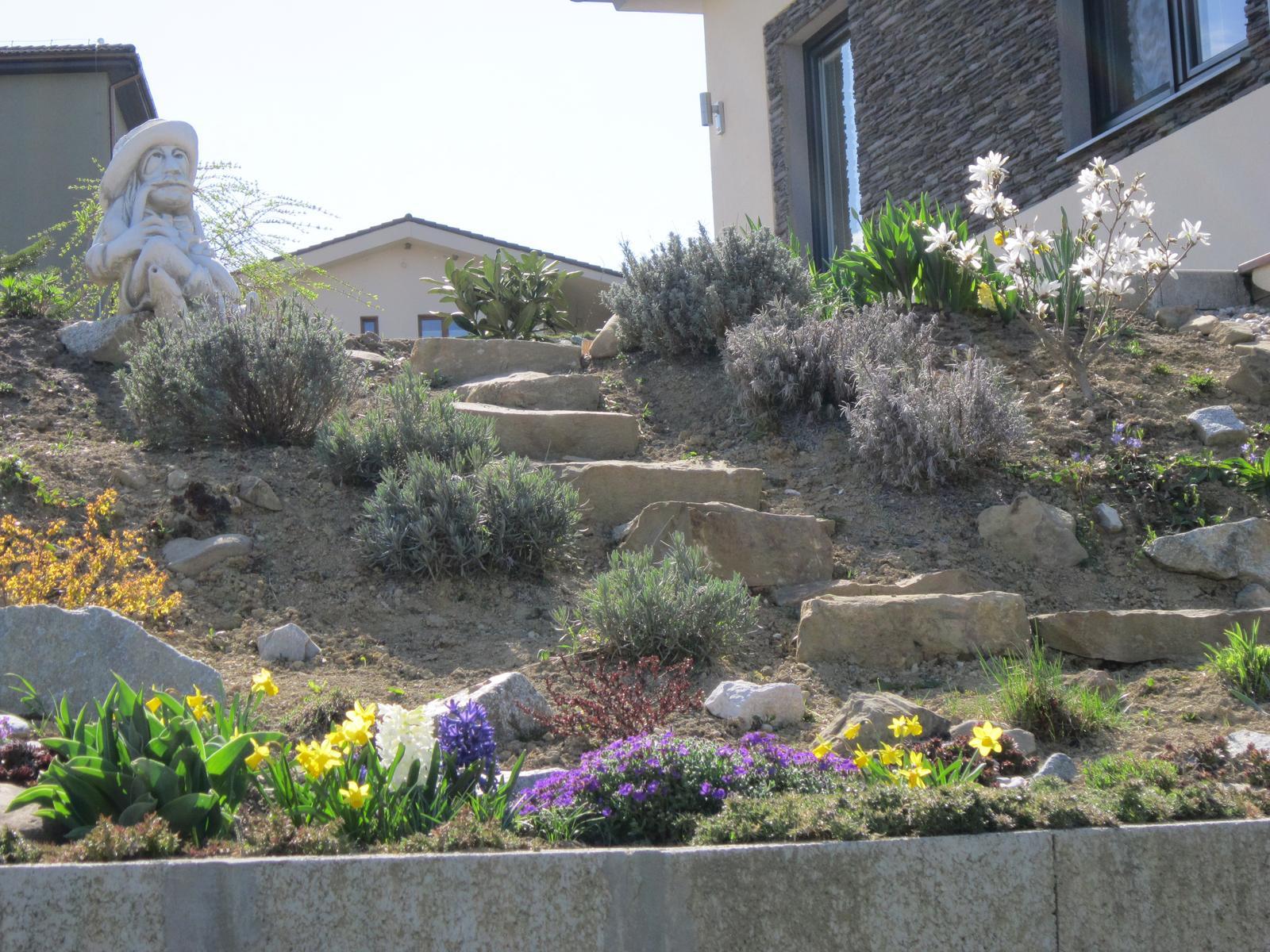 Moja záhrada...ako šiel čas - Obrázok č. 1