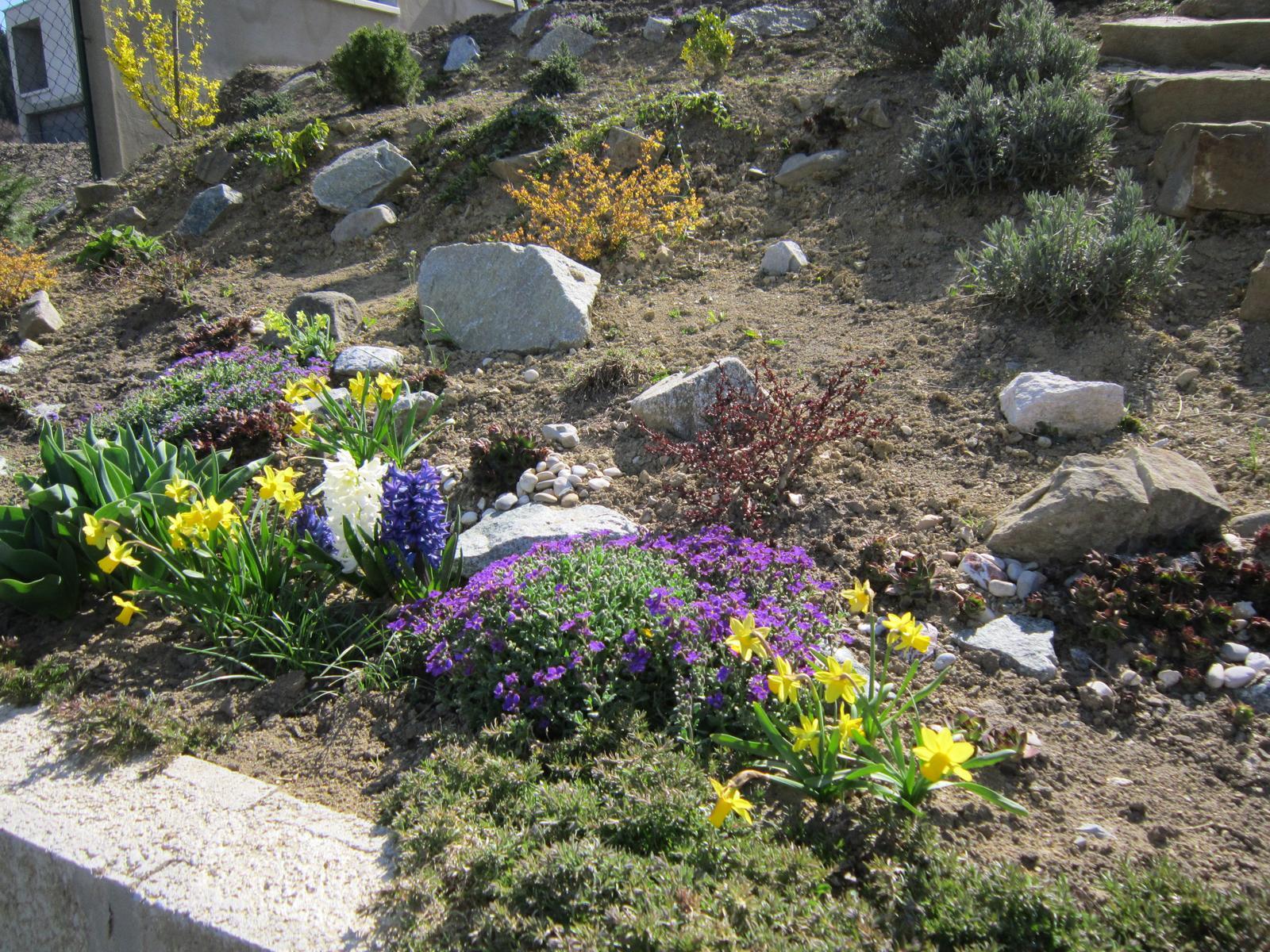 Moja záhrada...ako šiel čas - Obrázok č. 4