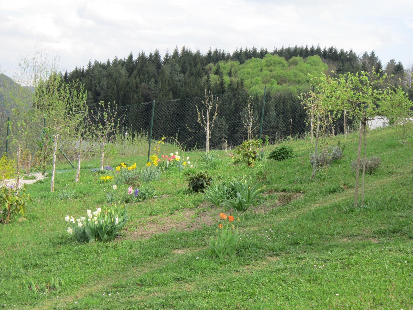 Moja záhrada...ako šiel čas - Obrázok č. 22