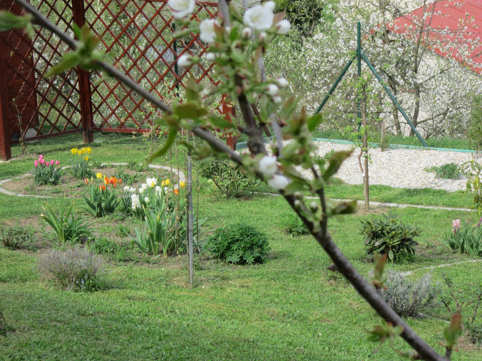 Moja záhrada...ako šiel čas - Obrázok č. 28