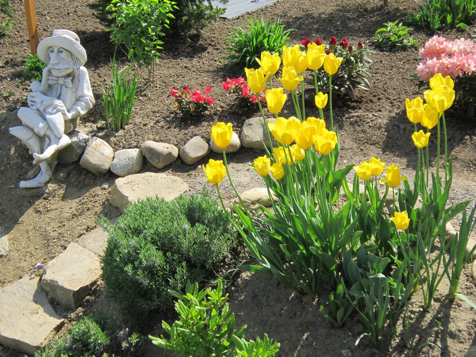 Moja záhrada...ako šiel čas - Obrázok č. 35