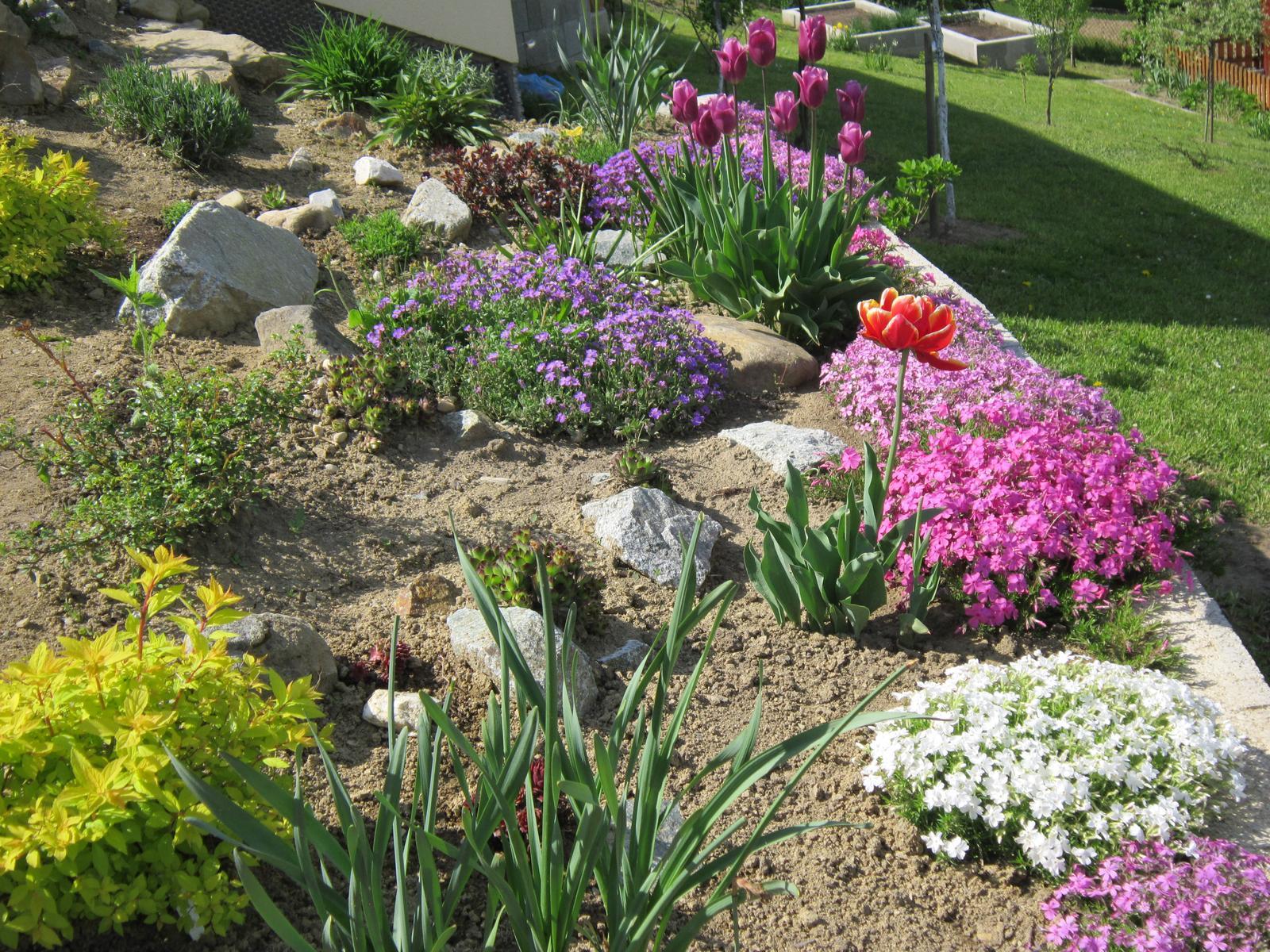 Moja záhrada...ako šiel čas - Obrázok č. 36