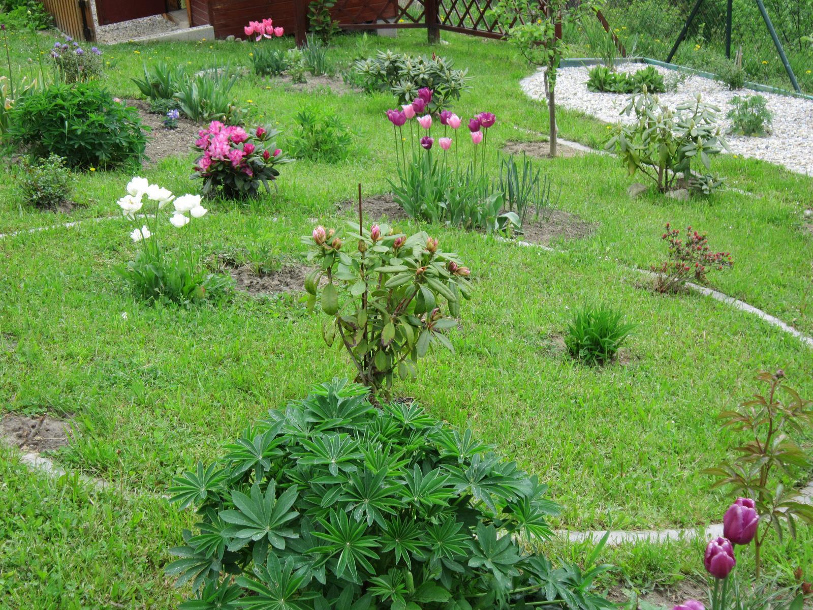Moja záhrada...ako šiel čas - Obrázok č. 41