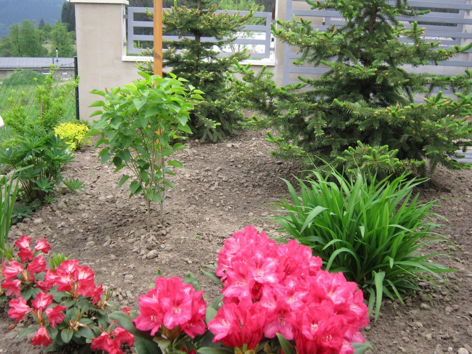Moja záhrada...ako šiel čas - Obrázok č. 43