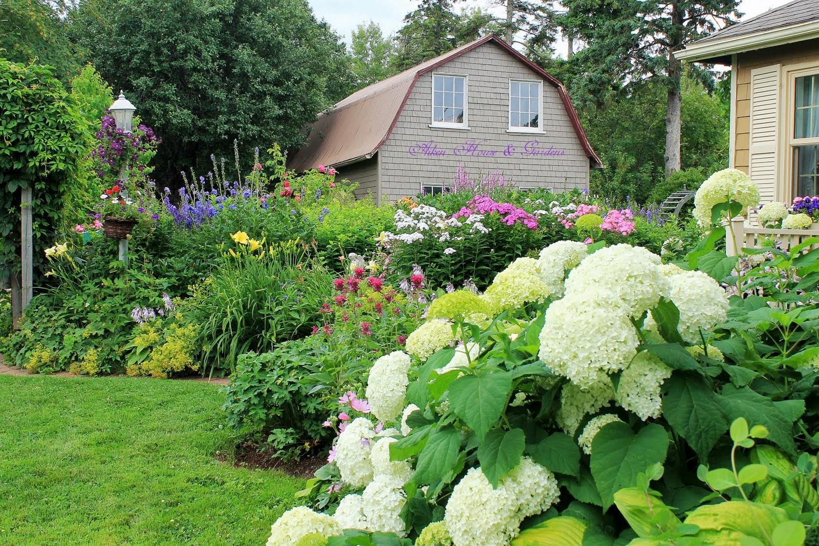 Krása divokej záhrady - Obrázok č. 435