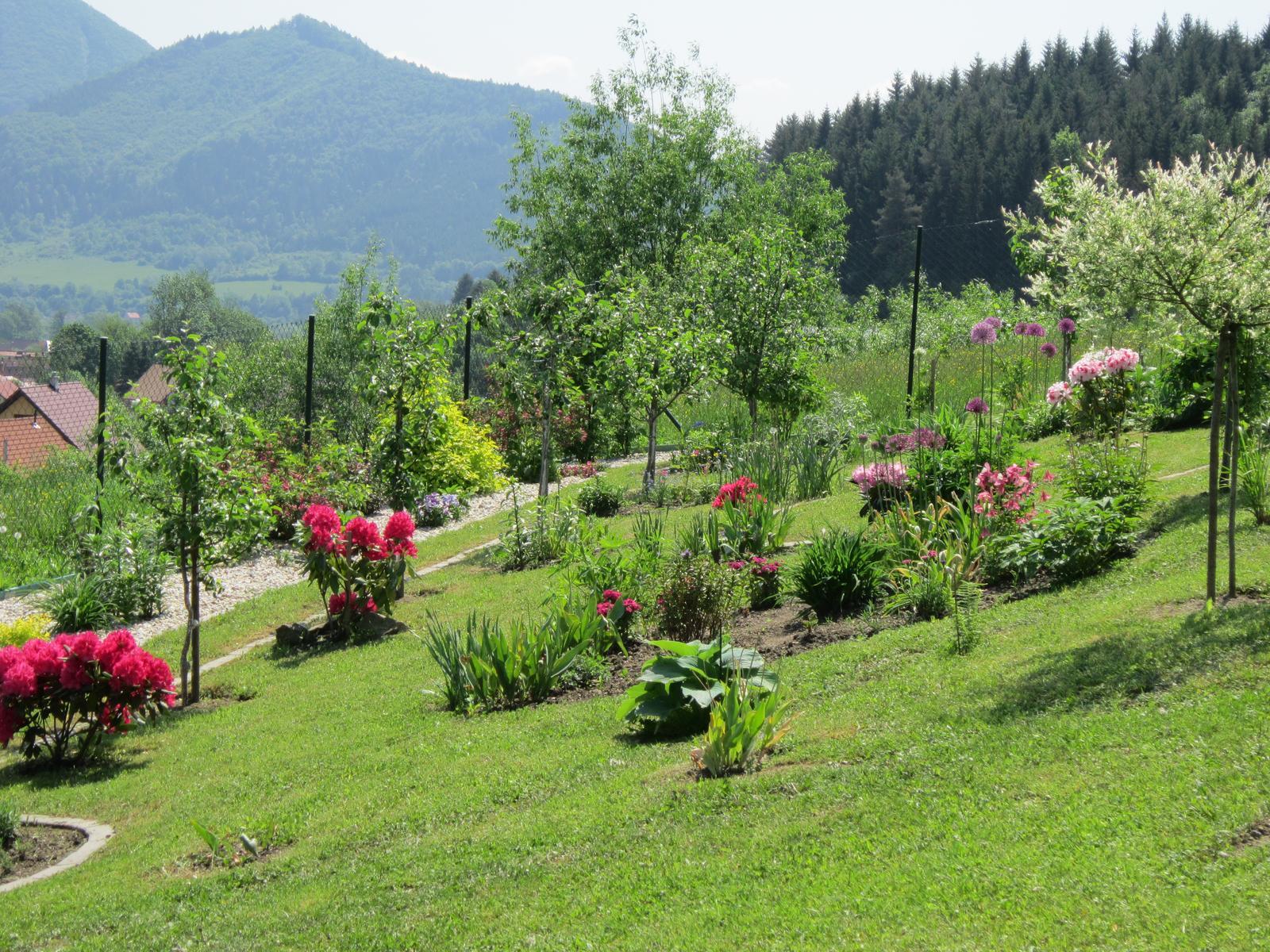 Moja záhrada...ako šiel čas - Obrázok č. 51