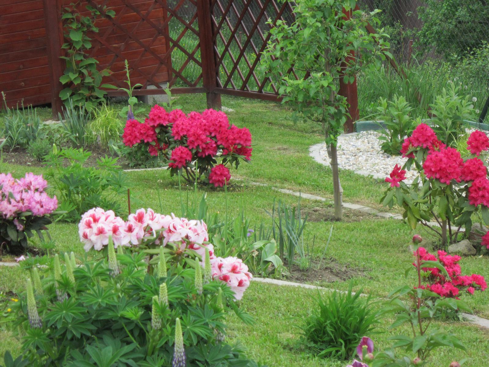 Moja záhrada...ako šiel čas - Obrázok č. 57
