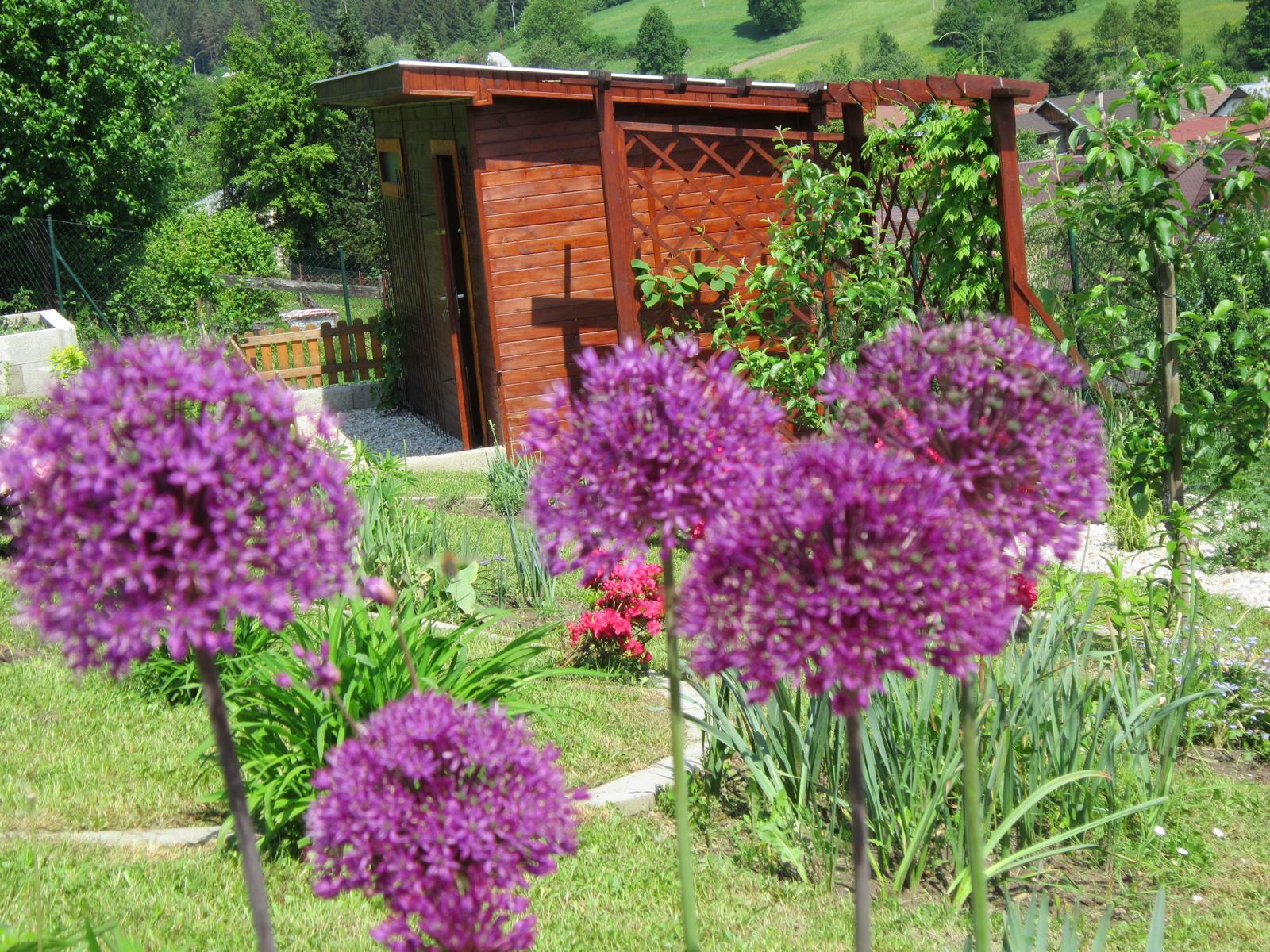 Moja záhrada...ako šiel čas - Obrázok č. 59