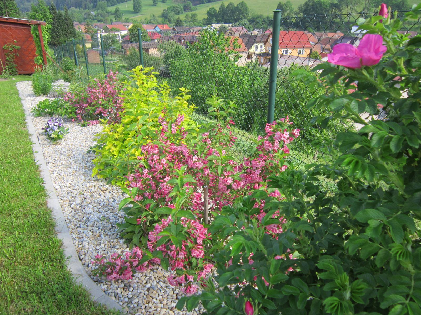 Moja záhrada...ako šiel čas - Obrázok č. 64