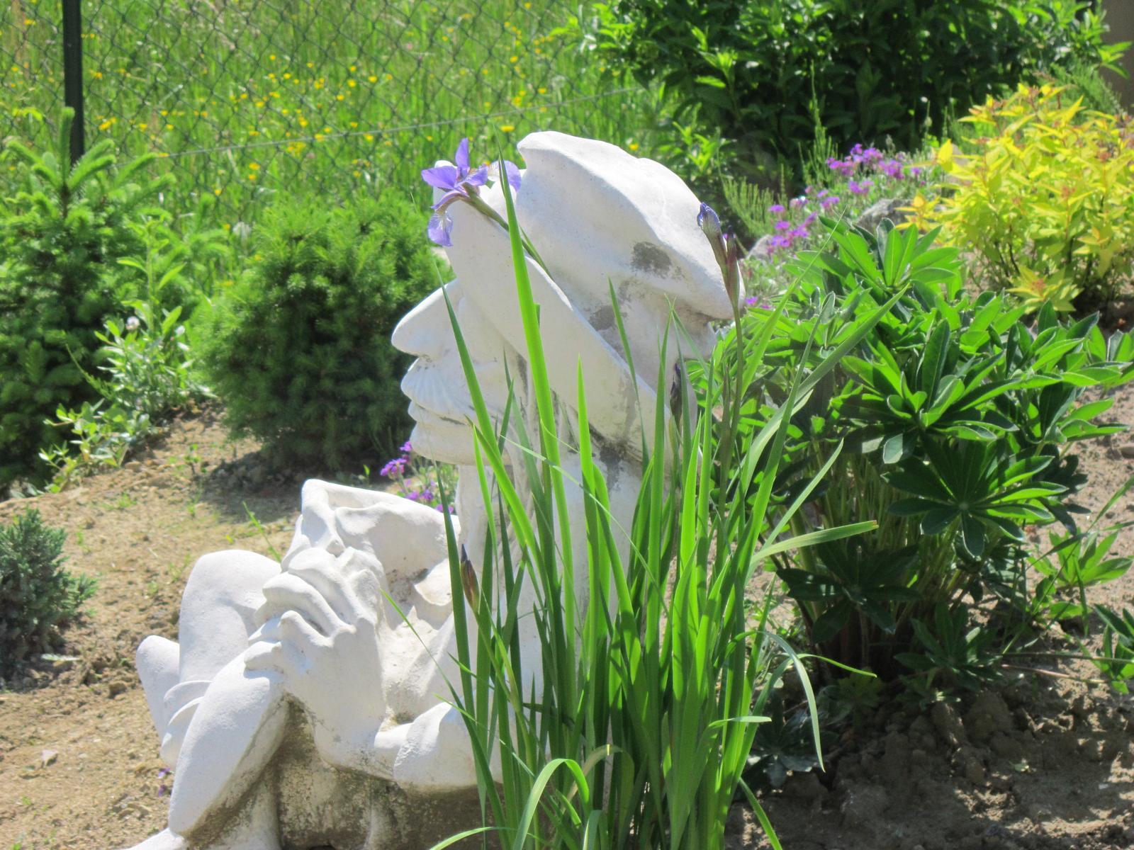 Moja záhrada...ako šiel čas - Ja si za klobúčik pierko dám...