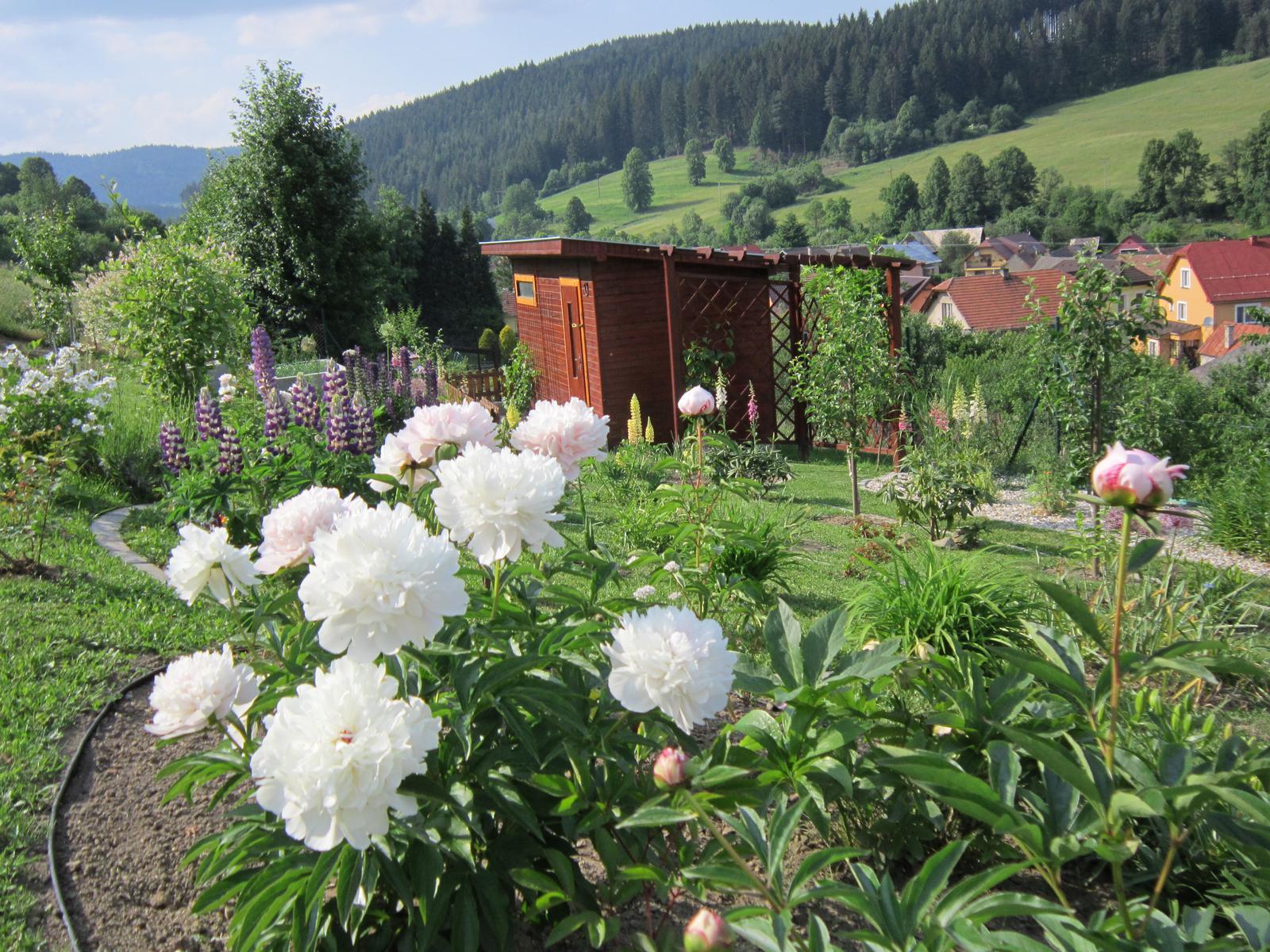 Moja záhrada...ako šiel čas - Obrázok č. 86