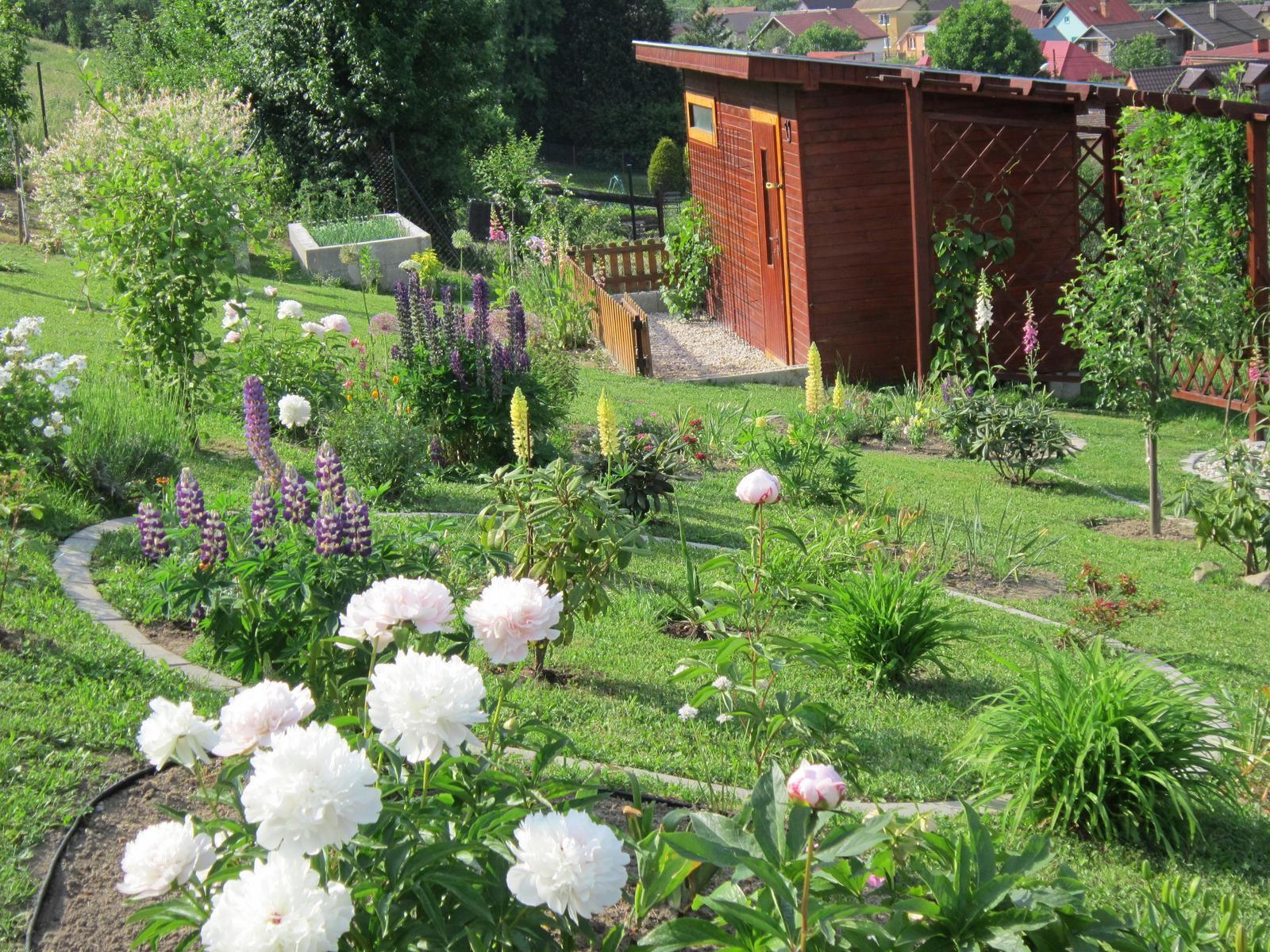 Moja záhrada...ako šiel čas - Obrázok č. 87