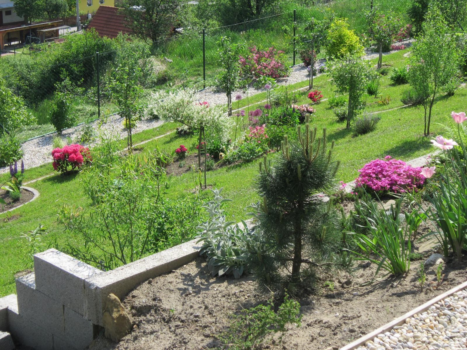 Moja záhrada...ako šiel čas - Obrázok č. 96