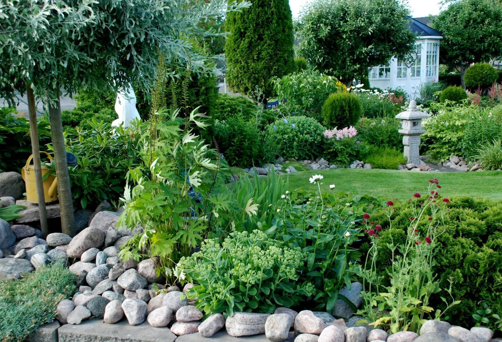 Záhrada,ktorá ťa nikdy neomrzí...divoká a krásna - Obrázok č. 2