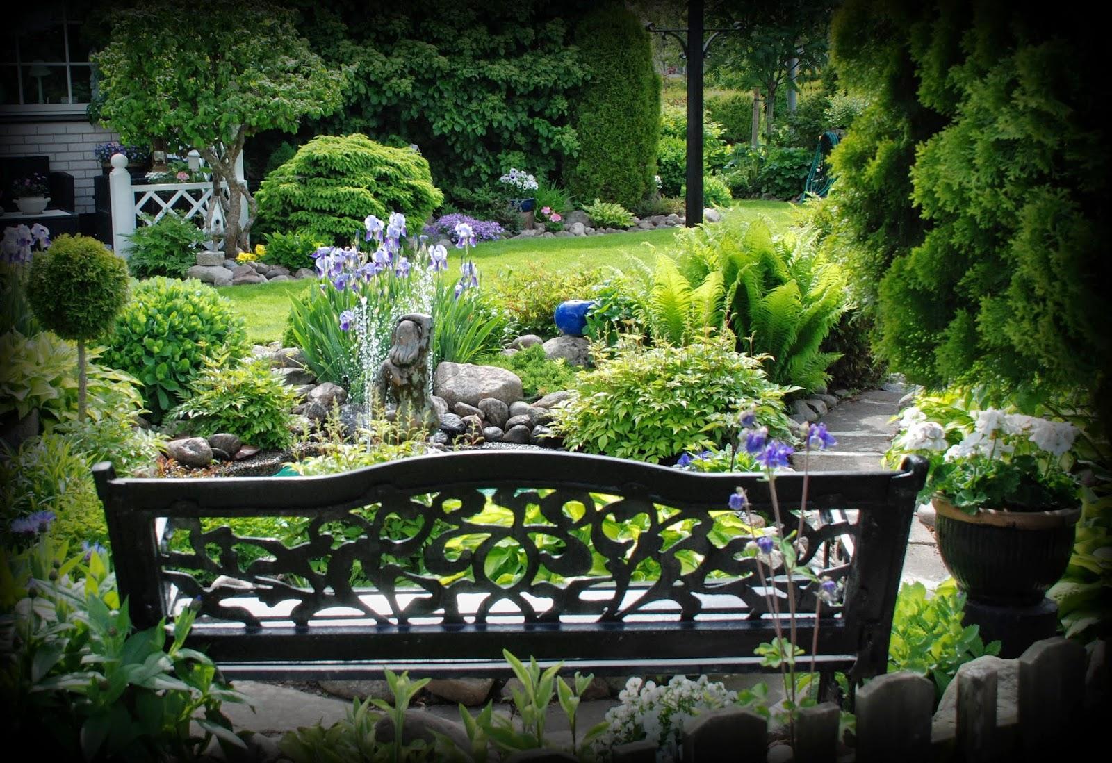 Záhrada,ktorá ťa nikdy neomrzí...divoká a krásna - Obrázok č. 4