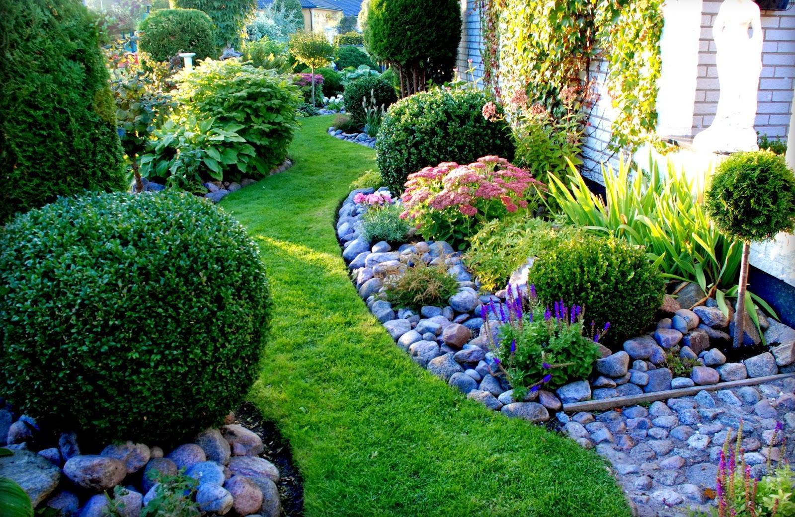 Záhrada,ktorá ťa nikdy neomrzí...divoká a krásna - Obrázok č. 5