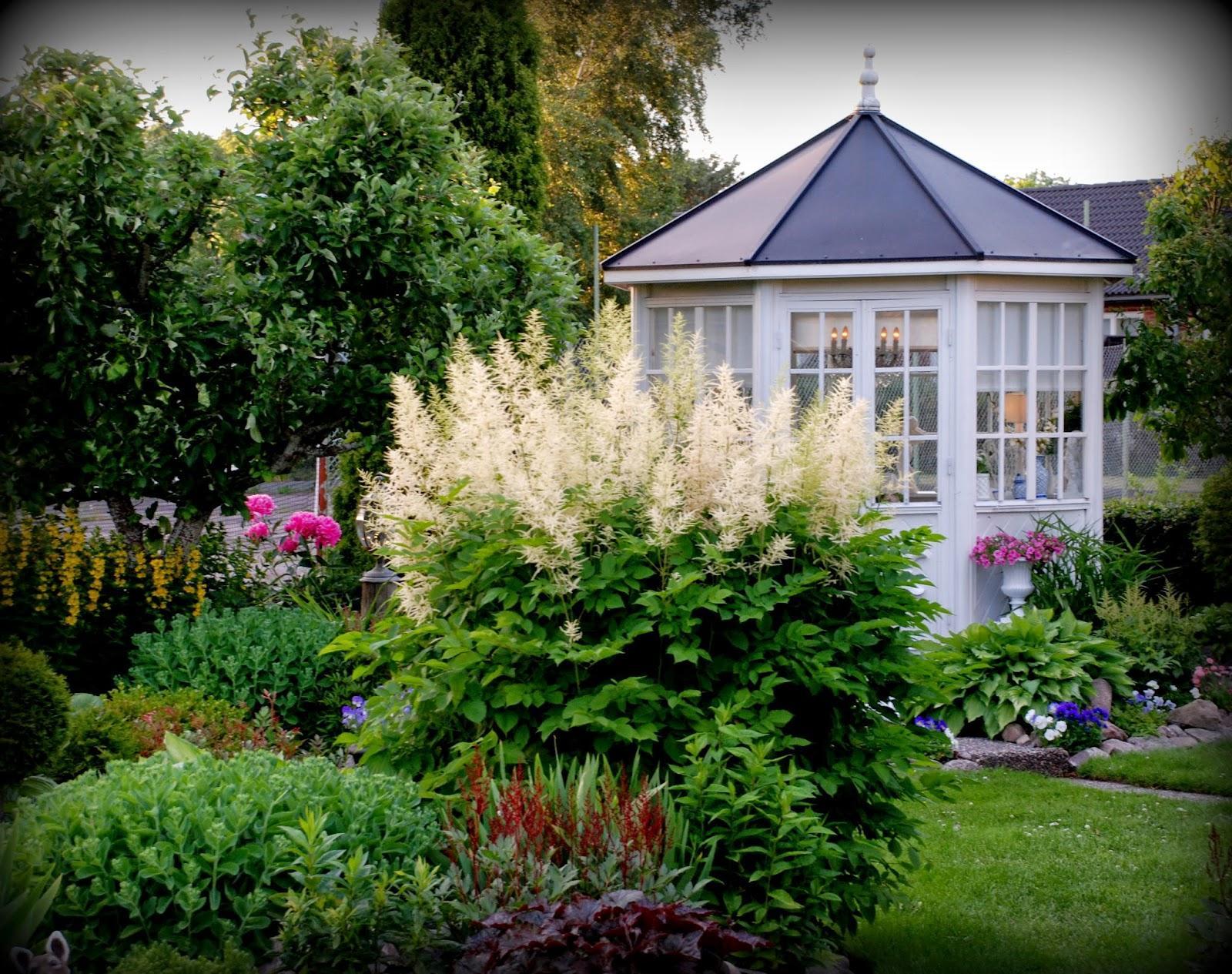 Záhrada,ktorá ťa nikdy neomrzí...divoká a krásna - Obrázok č. 6