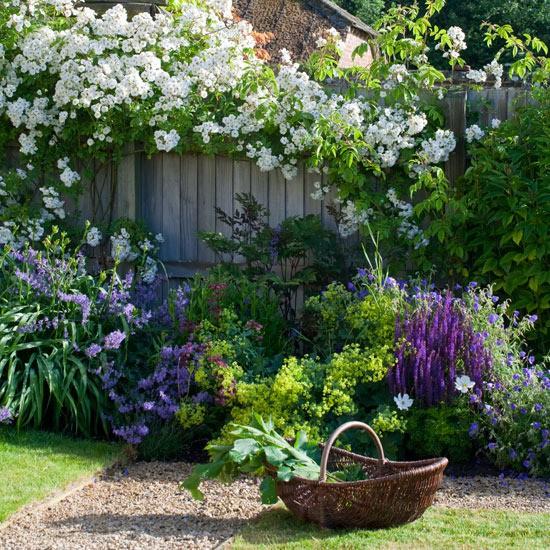 Záhrada,ktorá ťa nikdy neomrzí...divoká a krásna - Obrázok č. 7