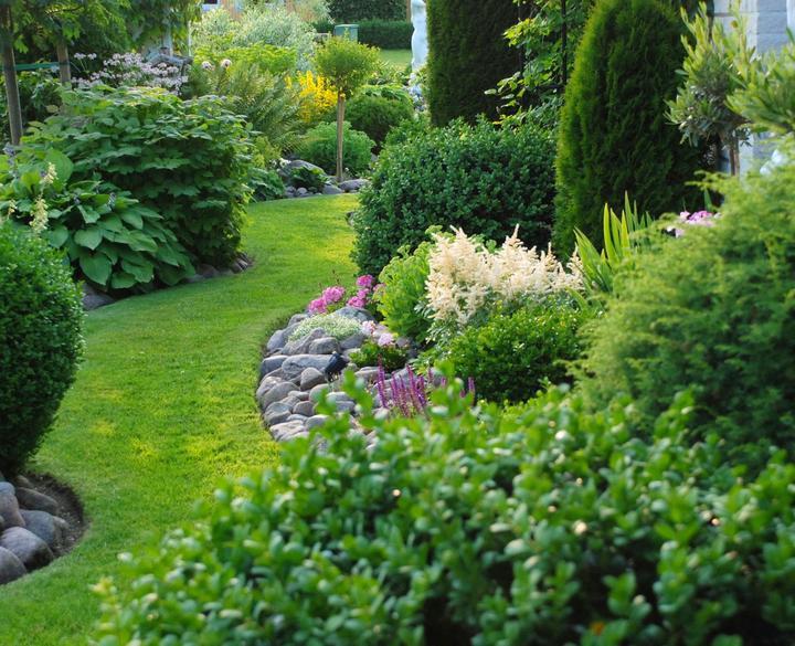 Záhrada,ktorá ťa nikdy neomrzí...divoká a krásna - Obrázok č. 8