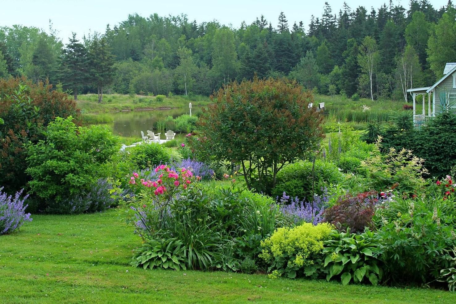 Záhrada,ktorá ťa nikdy neomrzí...divoká a krásna - Obrázok č. 13