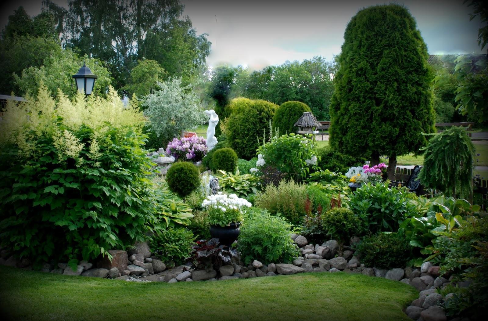 Záhrada,ktorá ťa nikdy neomrzí...divoká a krásna - Obrázok č. 18