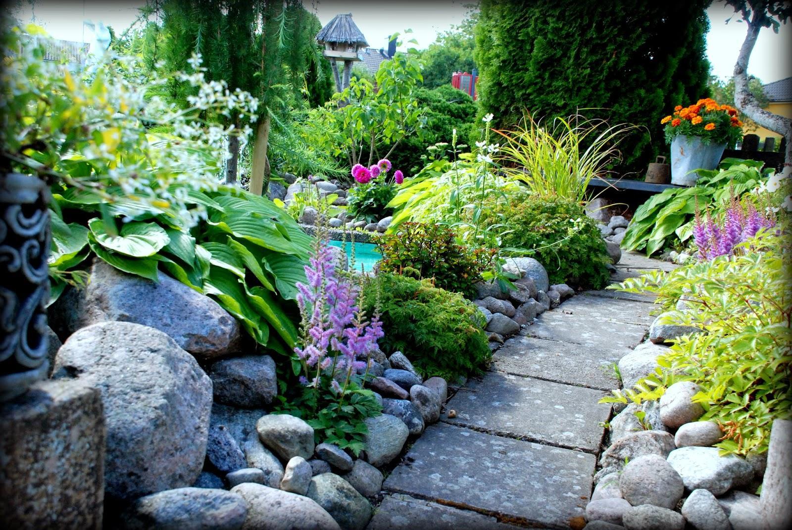 Záhrada,ktorá ťa nikdy neomrzí...divoká a krásna - Obrázok č. 22