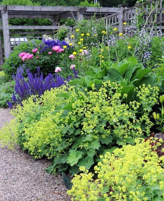 Záhrada,ktorá ťa nikdy neomrzí...divoká a krásna - Obrázok č. 27