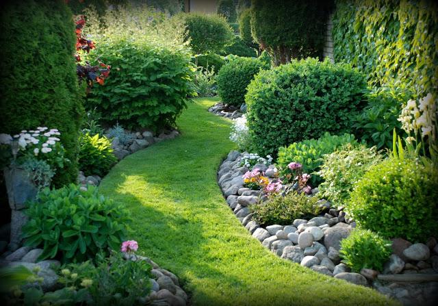 Záhrada,ktorá ťa nikdy neomrzí...divoká a krásna - Obrázok č. 32
