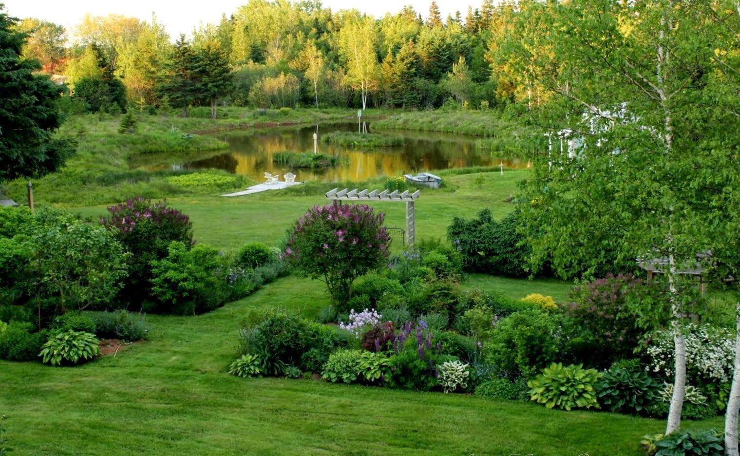 Záhrada,ktorá ťa nikdy neomrzí...divoká a krásna - Obrázok č. 33