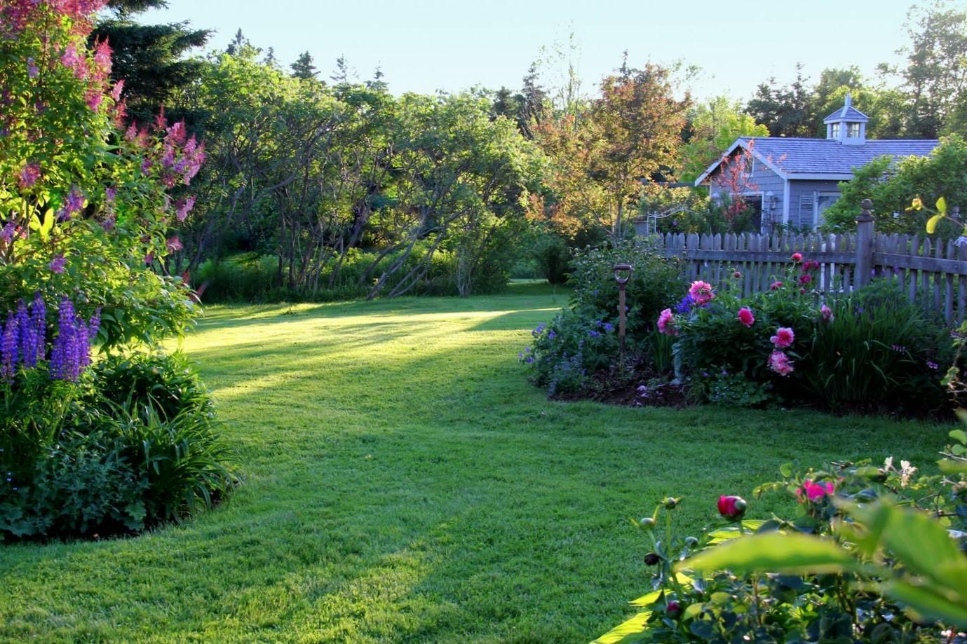 Záhrada,ktorá ťa nikdy neomrzí...divoká a krásna - Obrázok č. 35