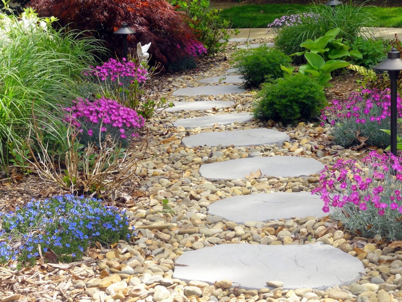 Záhrada,ktorá ťa nikdy neomrzí...divoká a krásna - Obrázok č. 41