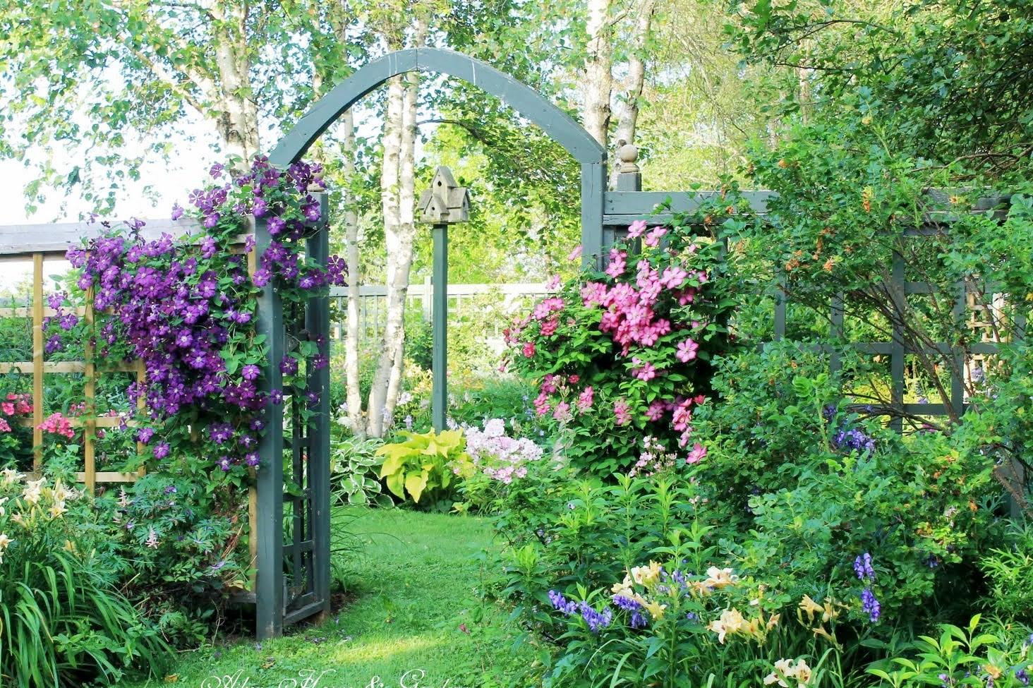 Záhrada,ktorá ťa nikdy neomrzí...divoká a krásna - Obrázok č. 42