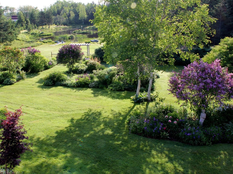 Záhrada,ktorá ťa nikdy neomrzí...divoká a krásna - Obrázok č. 45