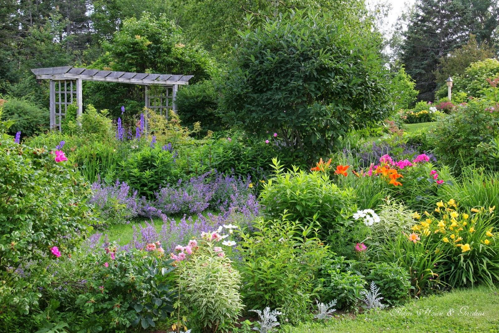 Záhrada,ktorá ťa nikdy neomrzí...divoká a krásna - Obrázok č. 49