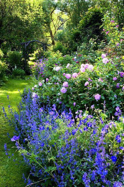 Záhrada,ktorá ťa nikdy neomrzí...divoká a krásna - Obrázok č. 53