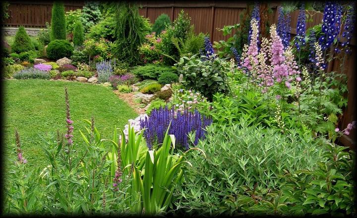 Záhrada,ktorá ťa nikdy neomrzí...divoká a krásna - Obrázok č. 57