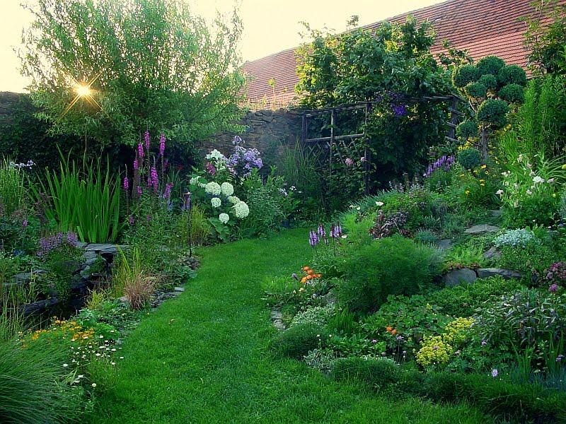 Záhrada,ktorá ťa nikdy neomrzí...divoká a krásna - Obrázok č. 68