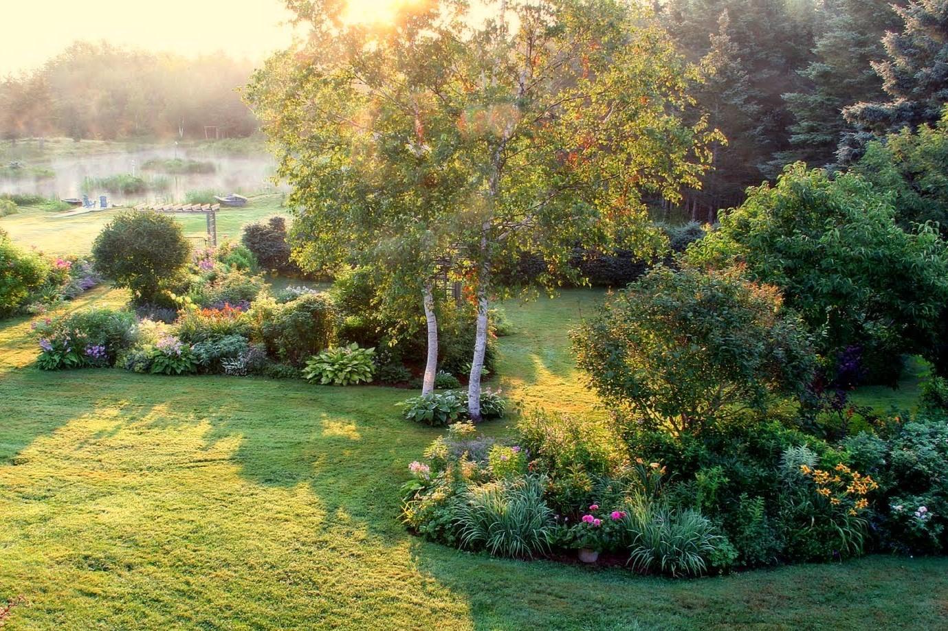 Záhrada,ktorá ťa nikdy neomrzí...divoká a krásna - Obrázok č. 74