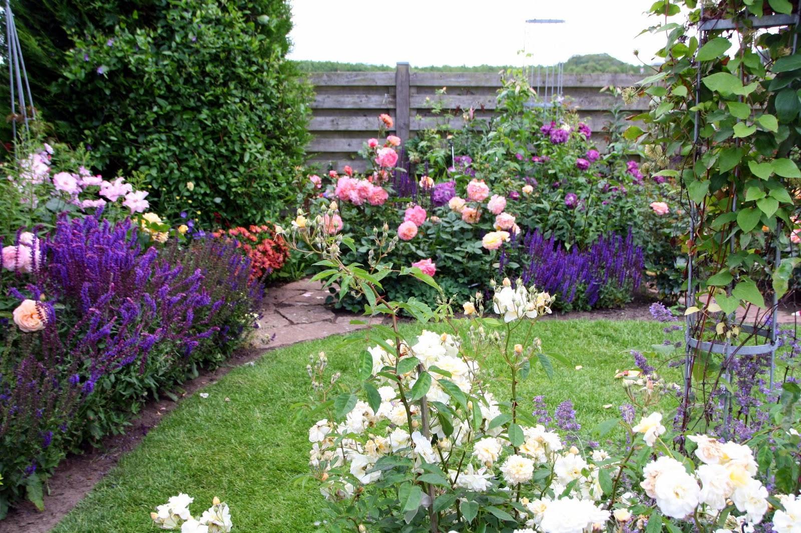 Záhrada,ktorá ťa nikdy neomrzí...divoká a krásna - Obrázok č. 78